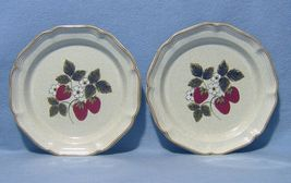 Mikasa Strawberry Festival EB801 2 Dinner Plates Garden Club - $14.99