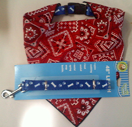 "Dog Collar with removeable bandana and 48"" Leash"