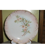 Antique Limoges Haviland & Company Plate - Late 1800s - €9,87 EUR