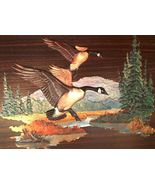 70's Fred SWENEY CANADIAN GEESE Calendar Art vi... - $19.50