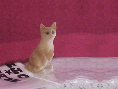 Pet CAT Heidi Ott Dollhouse Miniature ginger haunches