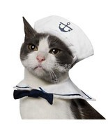 Small Pet Cat Dog Puppy Kitten Halloween Costume Sailor Suit Outfit Hat ... - £4.55 GBP