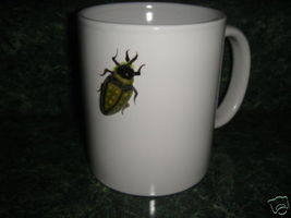 Personalized Mug Ceramic Bug Mug - $12.50