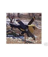 Whirligig, Yellow Headed Black Bird. Handcrafted,handpainted,wind mobile... - $35.00