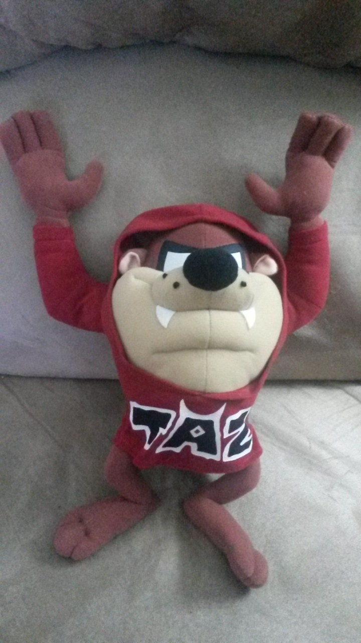 "Primary image for TAZMANIAN DEVIL TAZ HOODIE Brand New Licensed Plush NWT Tags 14"" Looney Tunes"