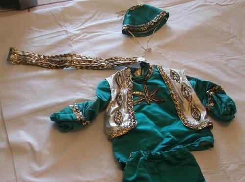 Mardi Gras Halloween Genie Arabian Nights Costume