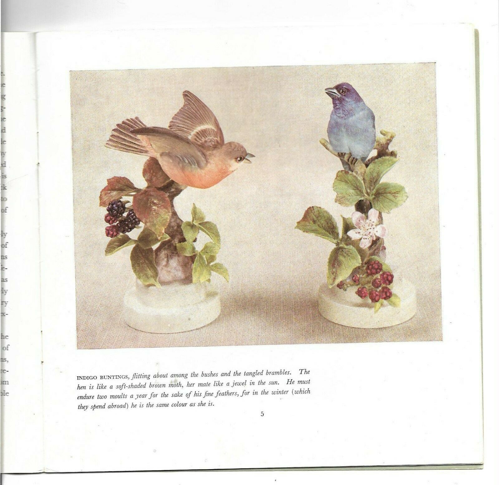 Story of Royal Worcester Doughty Birds Booklet + Invite to 1st Exhibition-1943