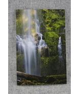 Photo Notecard Summer Evening light Lower Proxy Falls Oregon 4x6 Blank N... - $4.25
