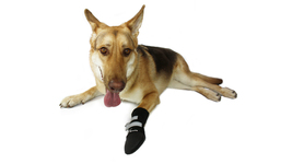 Walkin' Dog Boot, Single  2XLarge - $10.16