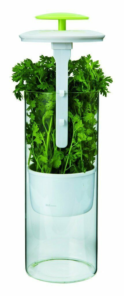 Herb Keeper Storage Asparagus Celery Parsley Container Extra Large Saver NEW image 2