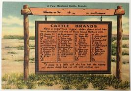 Old Linen Era Postcard A Few Montana Cattle Brands Historical Marker Hat... - $12.19