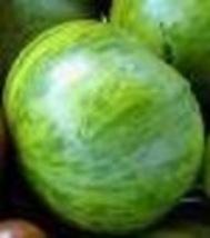 Tomato - Green Zebra - Non-Hybrid - Non-GMO - St. Clare Heirloom Seeds - $2.75