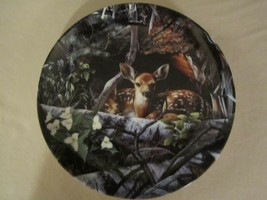 FAWN DEER collector plate KEVIN DANIEL Safe and Sound WOODLAND INNOCENTS #1 - $19.95