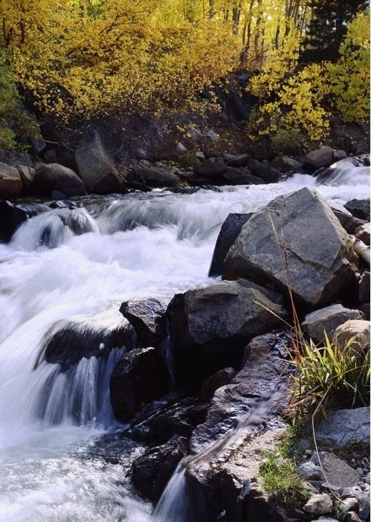 Bishop creek in the fall