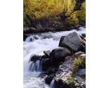 Bishop creek in the fall thumb155 crop
