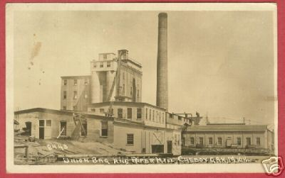 Primary image for CHEBOYGAN MI Union Bag Paper Mill RPPC Crescent BJs