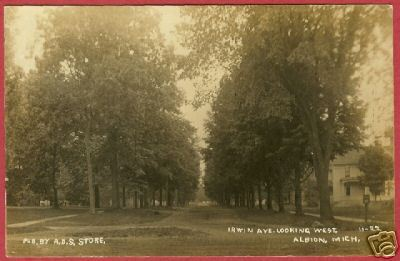 Albion MI Postcard Irwin Avenue Trees Homes RPPC BJs