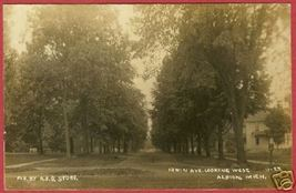 Albion MI Postcard Irwin Avenue Trees Homes RPPC BJs - $29.99