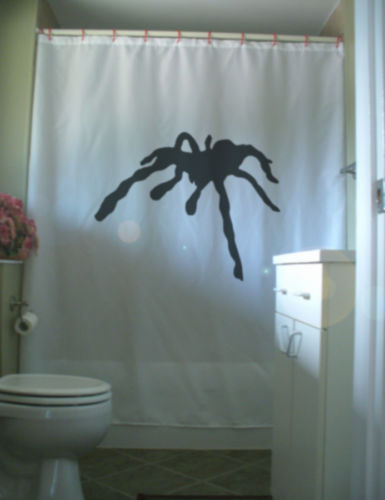 Shower Curtain giant spider tarantula black widow 8 leg