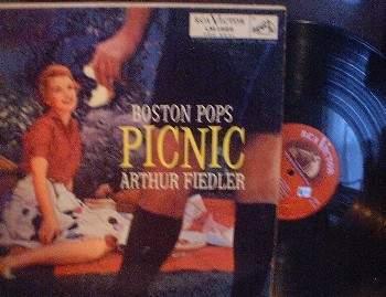 36 bostonpops picnic