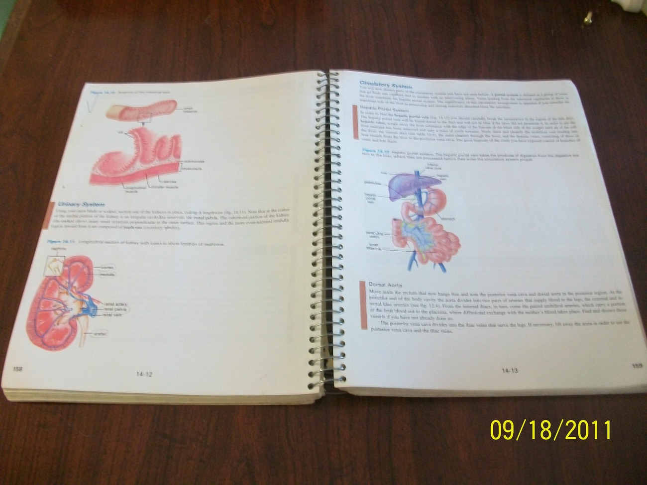 Inquiry into Life Laboratory Manual Sylvia S Mader 7th editi