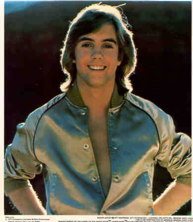 SHAUN CASSIDY 1977 Poster Put-On Sticker