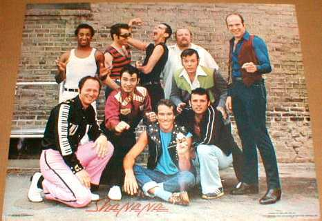 Primary image for SHA NA NA 1978 Original Poster near MINT