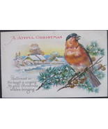 Divided Back Postcard, A Joyful Christmas, Bluebird on Pine, 1929 - $6.00