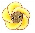 "Tiny Buttercup 2231t handmade clay button .37"" JABC Just Another Button C"