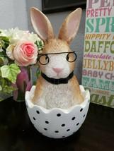 "Easter Rabbit Wearing Glasses in Egg Statue Figurine Tabletop Decor 12"" - $38.99"