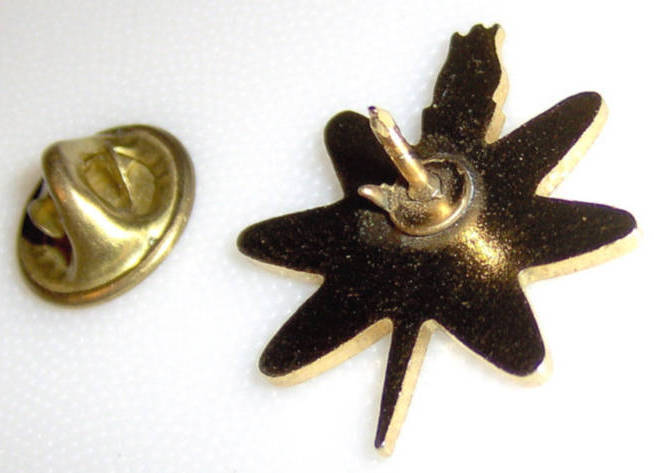 Academics With Torch Award Lapel Collectible Pin