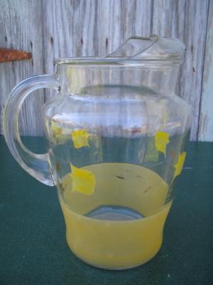 Colorful Glass Tulip Pitcher w IceLip & Glasses Ice Lip