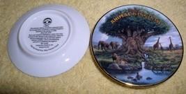 Disney  Animal Kingdom miniature plate - $15.07