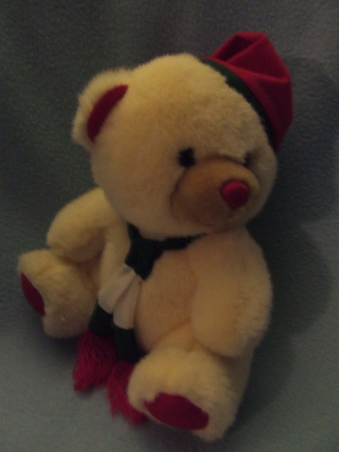 Plush Huggable Christmas Bear with Red Hat and Scarf