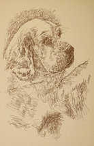 Clumber Spaniel Dog Art Print #236 Stephen Kline will draw your dogs nam... - $49.95