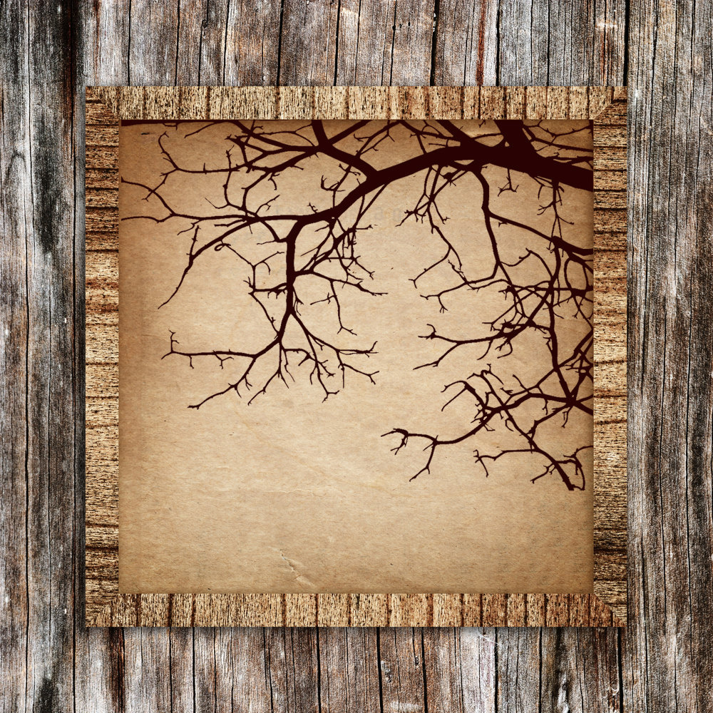 Bare Branches - Vinyl Wall Art Decal