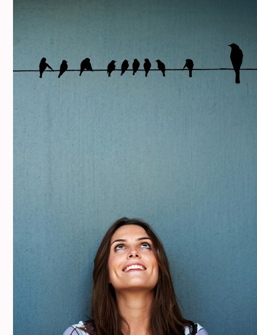 Birds on a Wire - Vinyl Wall Art Decal