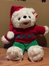 DanDee CHRISTMAS Snowflake TEDDY BEAR 2018 Walmart Bear White Boy Red Ou... - $28.71