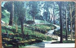 1908 PC Madrona Park View, Seattle, Wash. State No 5054 - $3.50