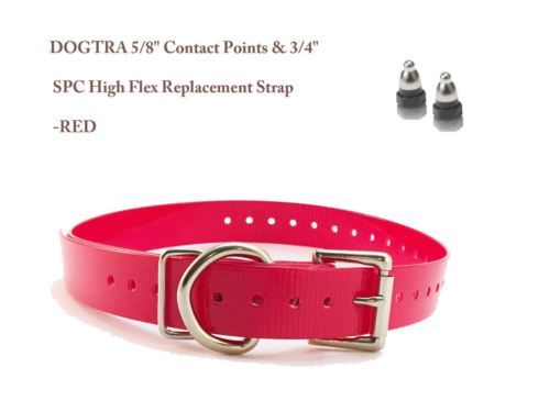 "DOGTRA 5/8"" Contact Points & 3/4"" SPC High Flex Replacement Strap - Red"