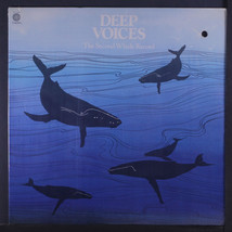 DEEP VOICES: The 2nd Whale Record LP Sealed (clean punch hole) Rock & Pop - £9.63 GBP