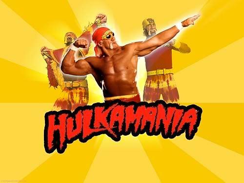 HULK HOGAN MASK PVC NEW WCW WWE WRESTLER MASK