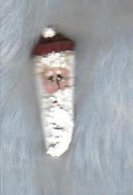 Handpainted Santa Pin on Pinecone Kernel, Unique Jewelry