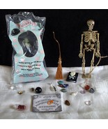 Wizard Oz Witch NIP McDonalds Gemstones Skeleton Handmade Spellbook Broo... - $39.99