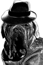 mastiff dog wearing hat printable art print png clipart download digital... - $4.99