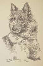 Belgian Tervuren Dog Art Print #93 Stephen Kline adds your dogs name free. GIFT - $49.95