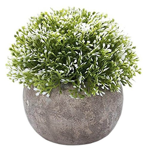 Primary image for George Jimmy Mini Artificial Plants with Pot Artificial Topiaries for Home Decor