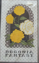 Ann Benson Begonia Fantasy Janlynn Chainstitching Kit Silk Screened Fabric - $29.69
