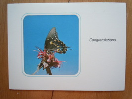 Vintage A Sunshine Card Congratulations Unused - $2.99