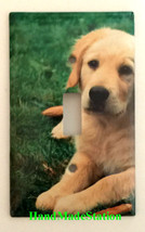 Golden retriever dog Light Switch Power outlet Wall Cover Plate Home decor